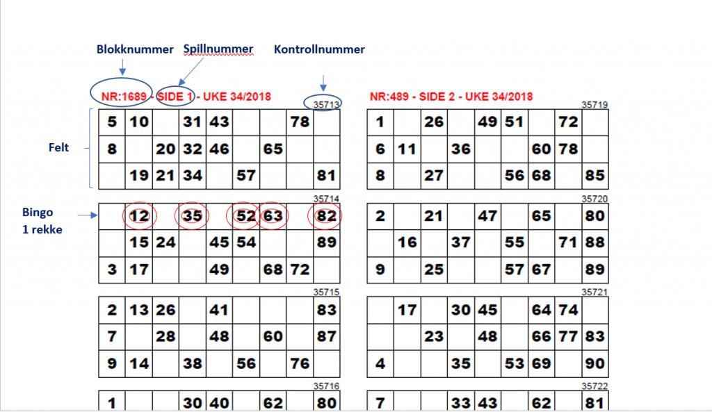 Bingo begreper
